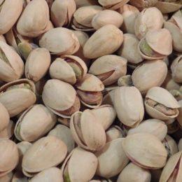 pistaches grillées salées 100g