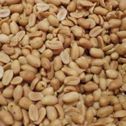 arachides grillées salées 250g