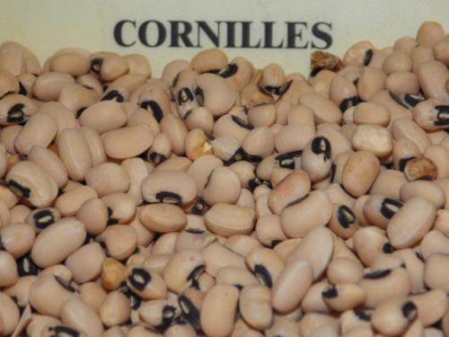 haricots secs cornilles 250g
