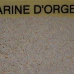 farine d'orge 250g