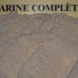 farine complète t 115 250g