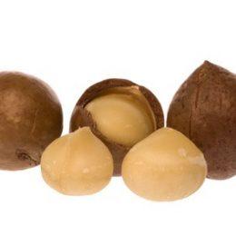 noix de macadamia 100g